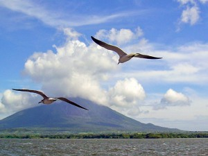 Politische Verfolgung auf einer paradiesischen Insel. © Dr. Alvarado Alvarez