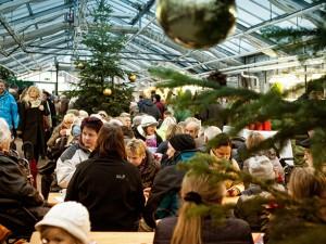 WfB---Adventsmarkt-innen_PMBeitrittsbild