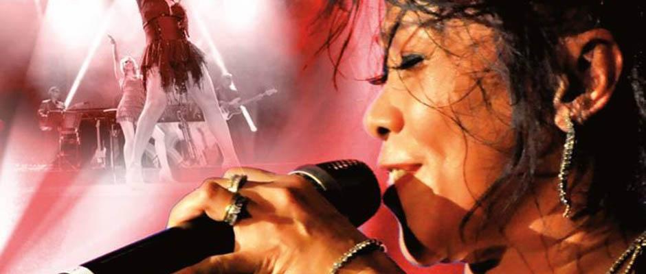 Musical: Tina - The Rock Legend.