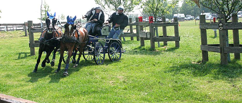 Kutschenwettbewerb in Herne-Sodingen. © Kneifel.