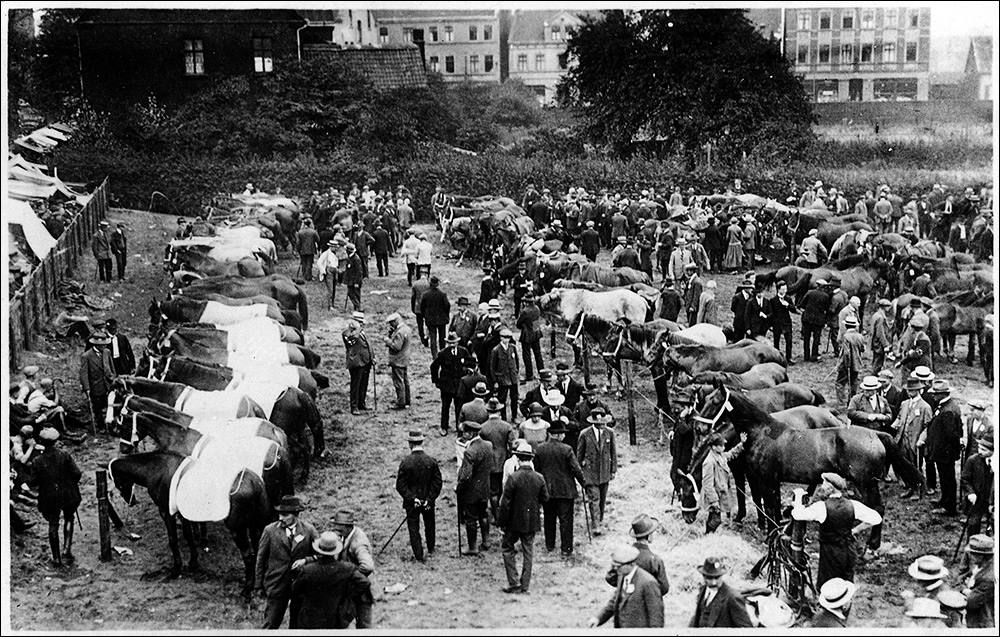 Der historische Pferdemarkt von 1925 ©Bildarchiv der Stadt herne