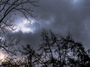 Sturm Friederike ©Thomas Schmidt, Stadt Herne