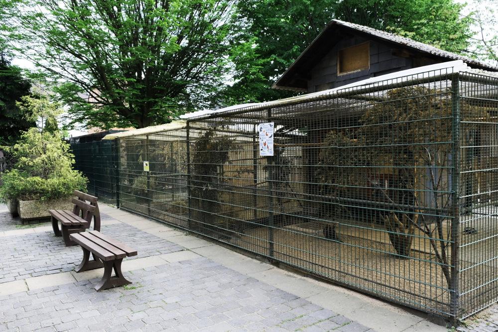 Der Mini Zoo Im Volksgarten Eickel Bekommt Neue Volieren. Der Förderverein  Minizoo E.V. Spendet Ein Neues Zuhause Für Die Fasane, Die Tauben Und Die  ...