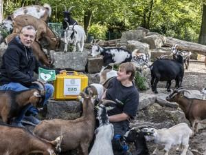 Tierischer Beistand bei der Präsentation des neuen Notfallkoffers für den Streichelzoo. ©Thomas Schmidt, Stadt Herne